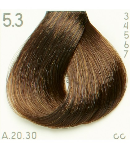 Tinte Piction XL hairconcept 5.3 - Castaño Claro Dorado